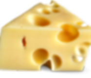 WellINFORMED Cheese