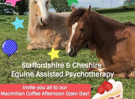 Meet the Therapy Ponies, and eat cake!