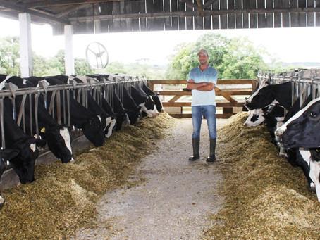 Cooperado investe na produção leiteira