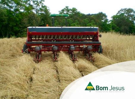 PLANTIO - Manejo eficiente da área para plantio da soja