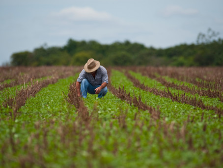 EMBRAPA: Paraná terá prioridade em mapeamento do solo na área rural