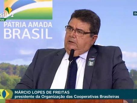 PLANO SAFRA II: Medidas atendem prioridades dos produtores e cooperativas, avalia presidente da OCB