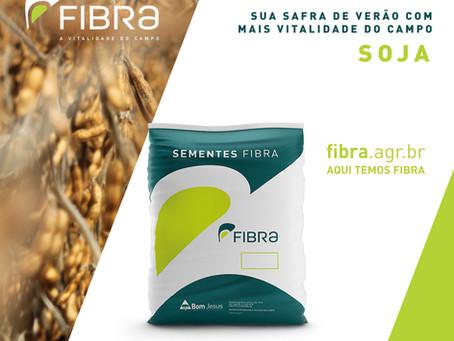 FIBRA é destaque em produtividade de soja, de acordo com campo demonstrativo da Emater