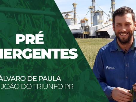INFORME TÉCNICO - Uso de Pré-Emergentes, por Álvaro de Paula
