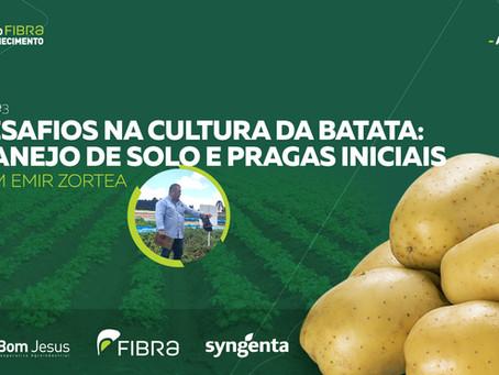 Bom Jesus realiza palestra online sobre a cultura da batata