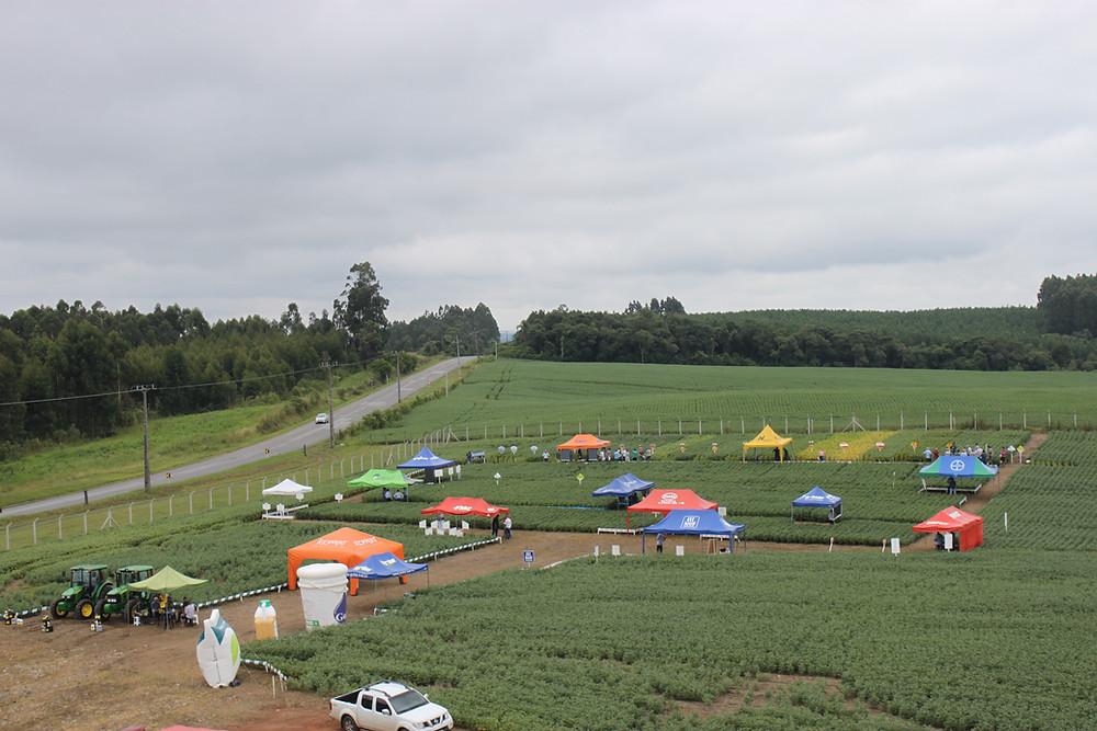 Foto da Manhã de Campo 2020 em São João do Triunfo