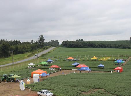 Tecnologia: Manhã de Campo 2020 acontece nas unidades da Cooperativa Bom Jesus
