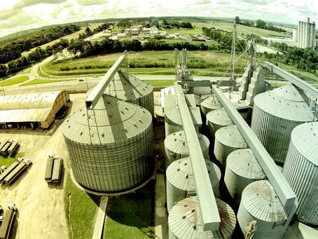 Agronegócio segue ganhando relevância nas exportações do Brasil