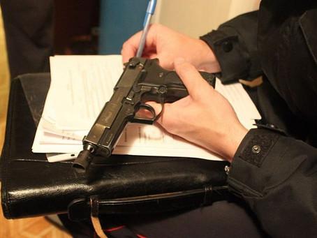 Госдума приняла проект о незаконном обороте оружия