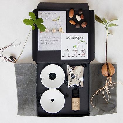 Box set germinazione e propagazione semi