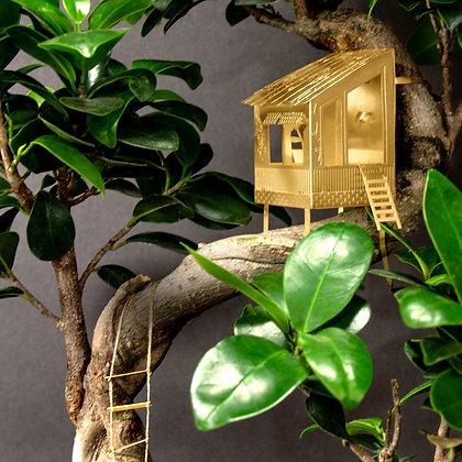 Piccola casa sull'albero per piante