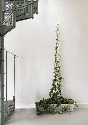 Decoro supporto in ottone per piante rampicanti