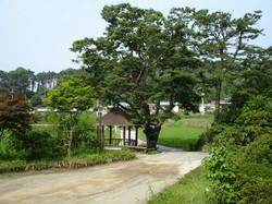 원곡 산책