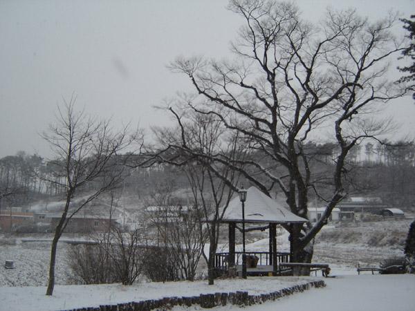 원곡 겨울2
