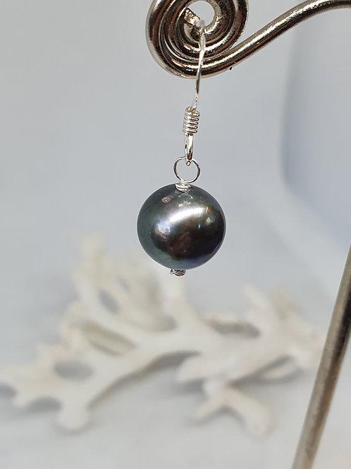 Peacock freshwater pearl sterling silver earrings