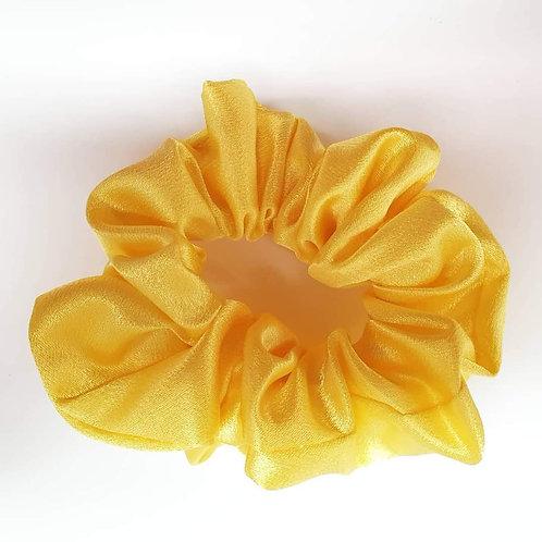 Elastico Pomezia