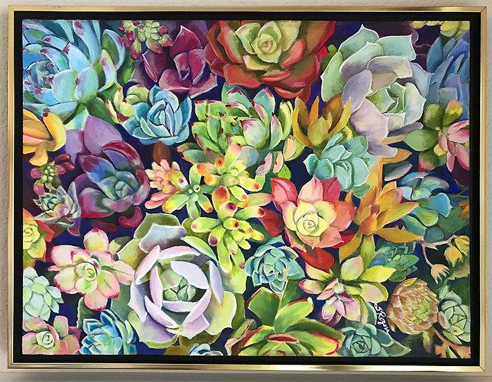 Magnificent Succulents