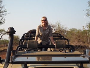 Guide to safari in South Africa