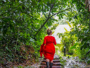 Fotoshoot i regnskogen