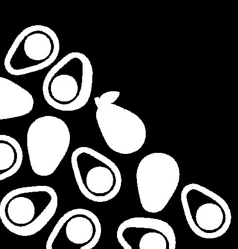 avo_illustration-02.png