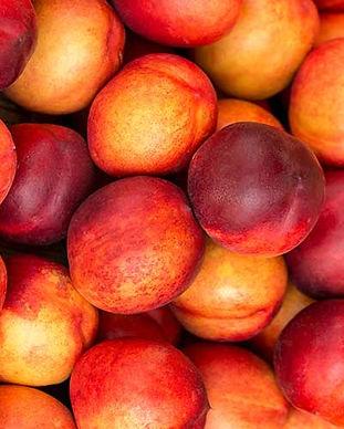 stone_fruit.jpg