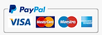 453-4537293_pay-with-paypal-logo-paypal-