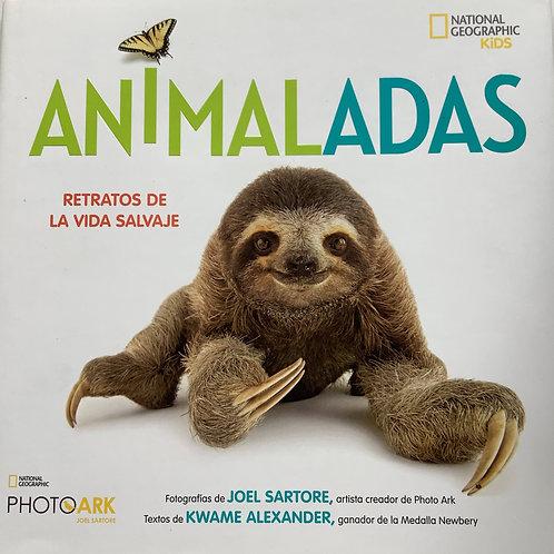 Animaladas - Retratos de la vida salvaje