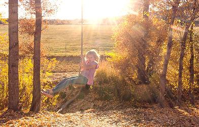 Tree Swings!!!