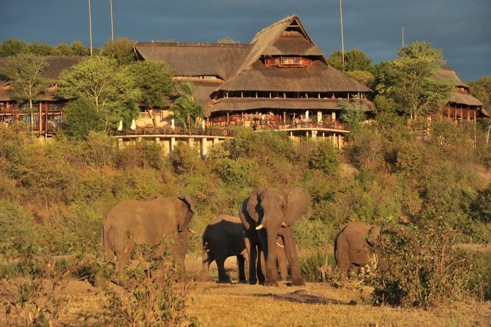 Our favourite location - Victoria Falls Safari Lodge