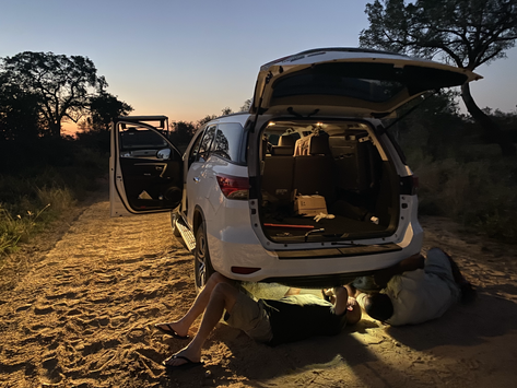Flat Tyre in Kruger at Sunset