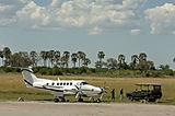 Let us arrange you private safari experiene to Africa by private plane