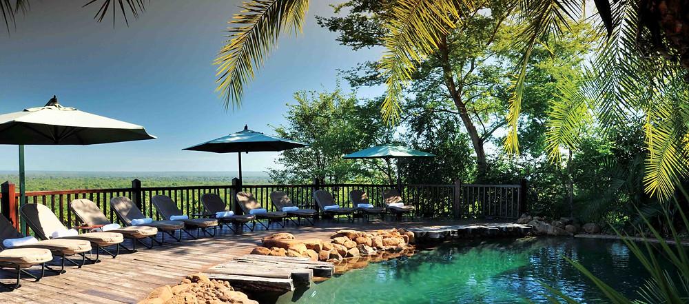 Refreshing swim at Victoria Falls Safari Lodge