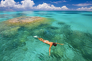 Explore Indian Ocean Islands on a snorkelling and beach  afari