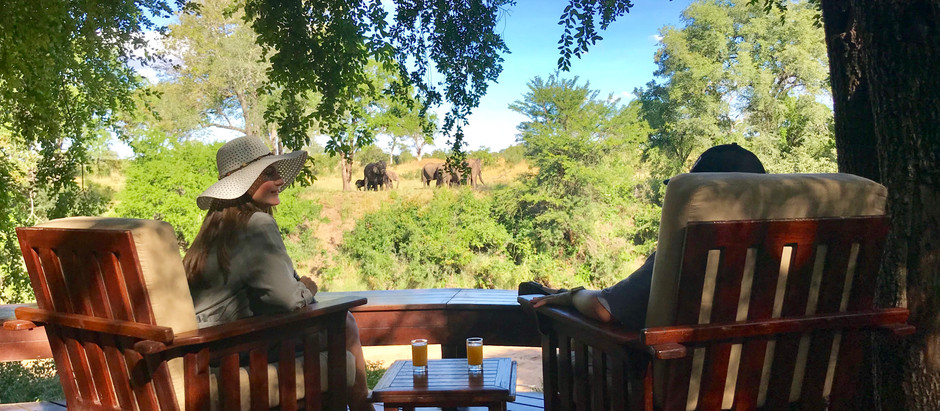A Kruger Gem: Imbali Safari Lodge