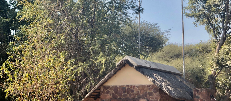 The Little Letaba Roof Visitor