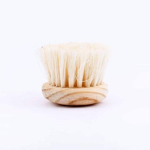 Cepillo Facial en Seco