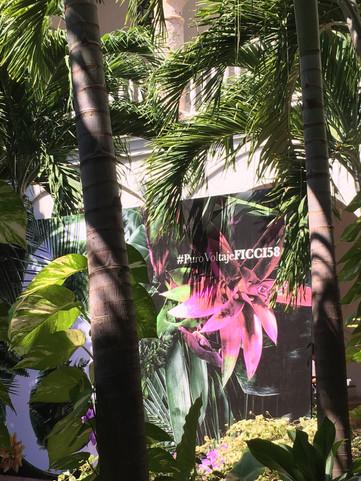 Los festivales de cine en Iberoamérica: tradición y diversidad