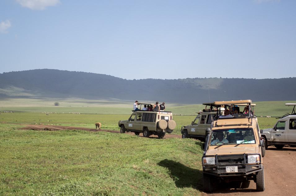 Tanzania, 2017