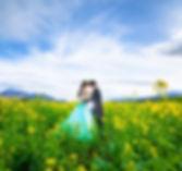 菜の花畑で撮影する新郎新婦