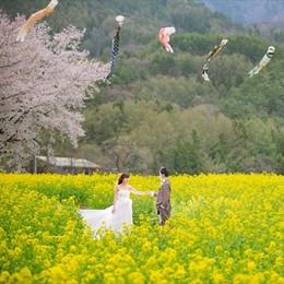 飯山市菜の花公園