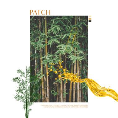 13. Patch C-06.jpg