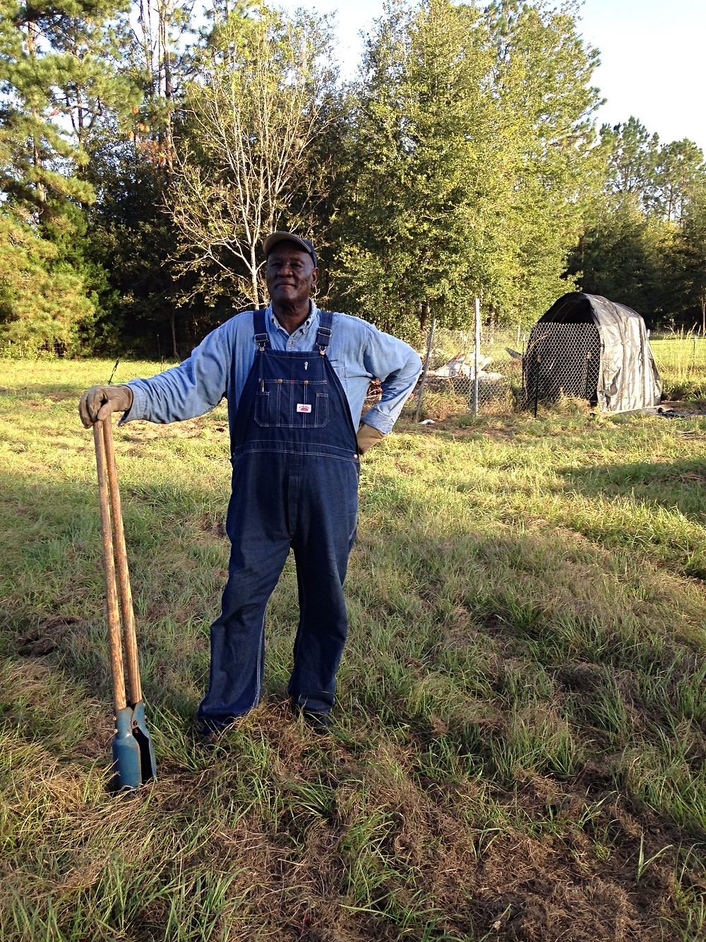 Proud to be a senior homesteader