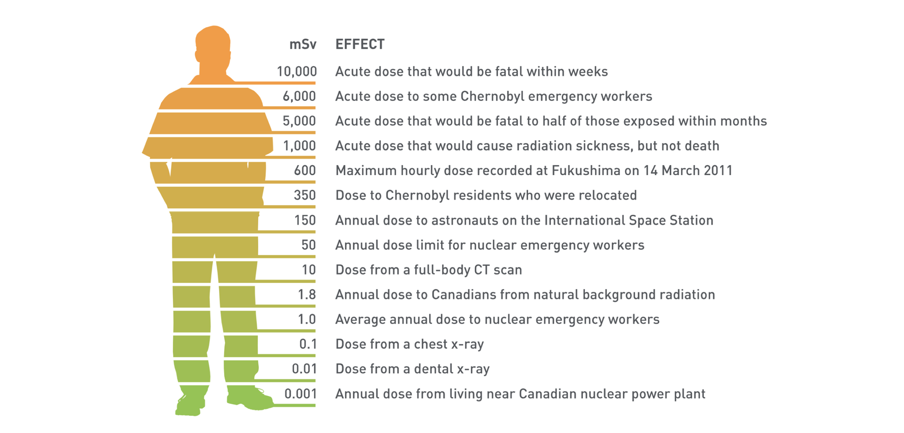Radiation Exposure and Effects
