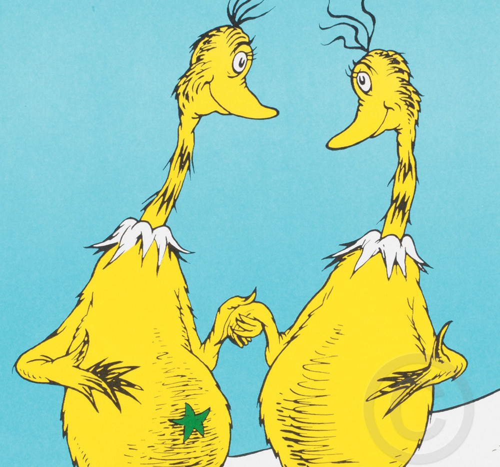 Star-Bellied Sneetches
