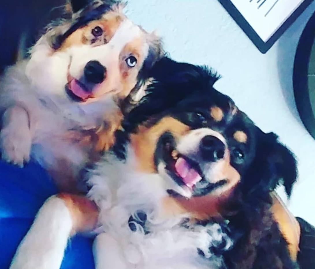 Skye and Malcolm (Mal) cuddling