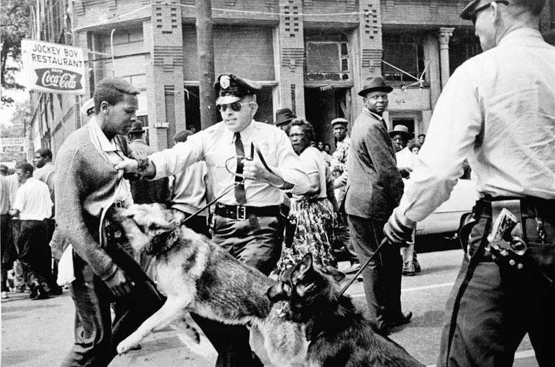 A police dog attacks a peaceful protestor in Birmingham, AL in 1963