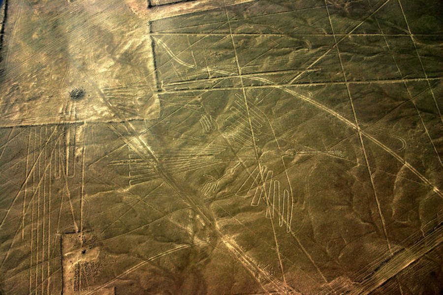 Nazca Lines Condor
