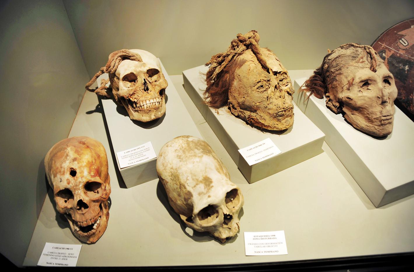 Nazca Trophy Heads