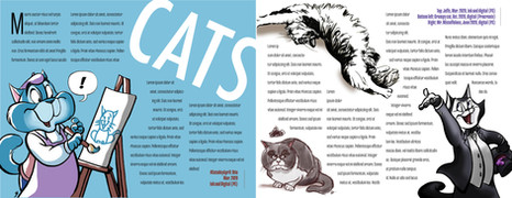 Capitalize on the Chaos: Cats Spread
