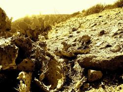 Landscape Desert Photography